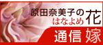 原田奈美子の花嫁通信